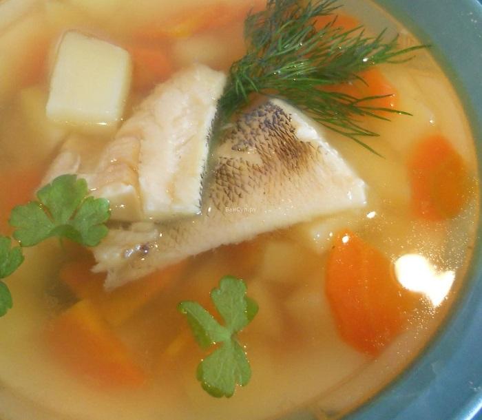 Классический рецепт рыбного супа из хека