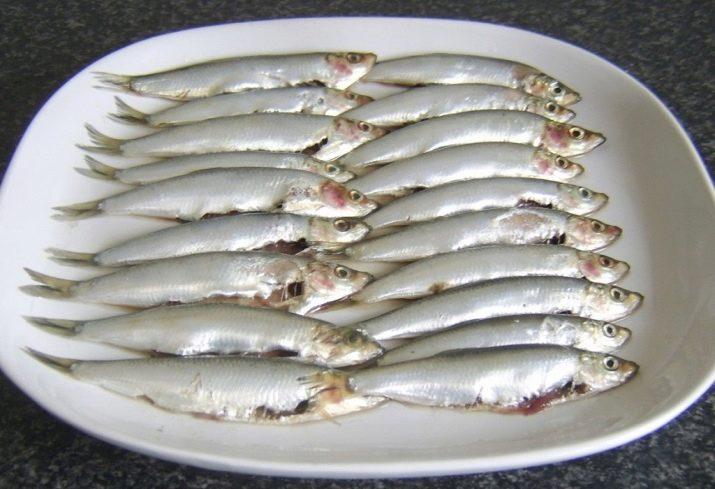 Различия между рыбами