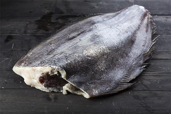 Польза рыбы для организма мужчины