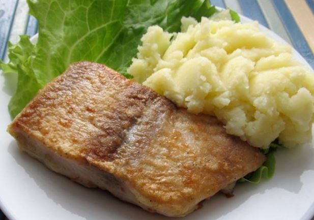 Пангасиус — акулий сом: что за рыба, ее свойства и рецепты