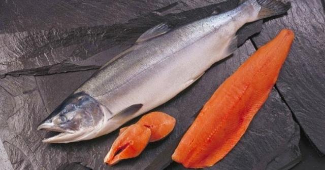 Чавыча - красная рыба