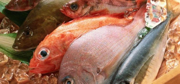 Самая вкусная рыба в мире топ 10
